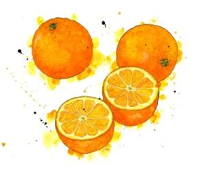 saville oranges